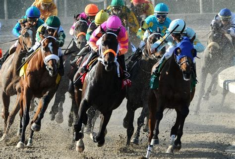 How To Win Money On Horse Racing - horse race betting tips for becoming a betting master