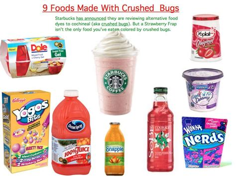 food coloring bugs reading your labels is vital if you see cochineal