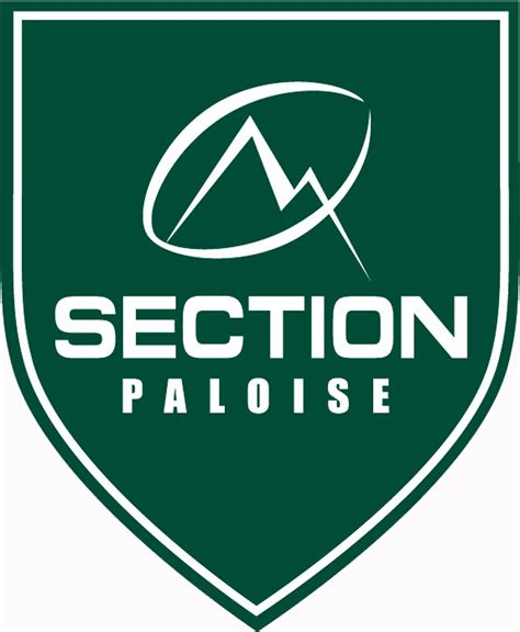 section 8 logo section paloise rugby 224 xv wikiwand