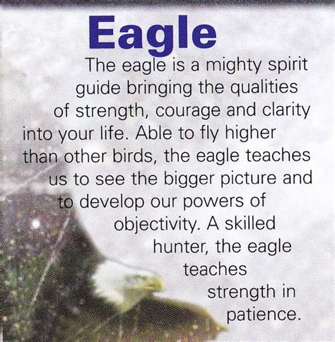 spiritual themes meaning your animal spirit guide for may 25th is the eagle