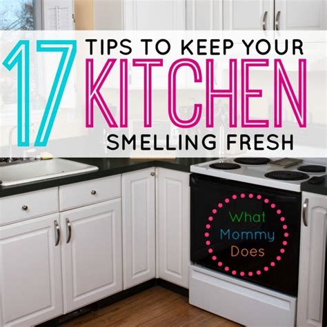 how to keep your house from smelling like a dog how to keep your house from smelling like a 28 images household chores what does