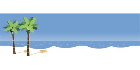beach transparent beach palms ocean 183 free vector graphic on pixabay