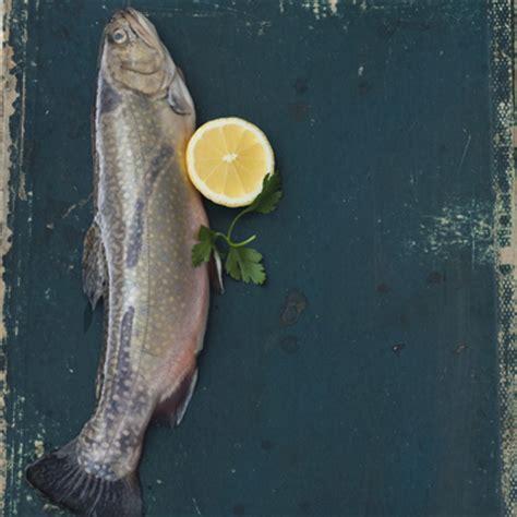 cuisiner l omble chevalier poisson les choix 233 coresponsables ch 226 telaine