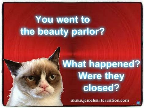 Make A Grumpy Cat Meme - 14 hilarious grumpy cat memes that will make you smile