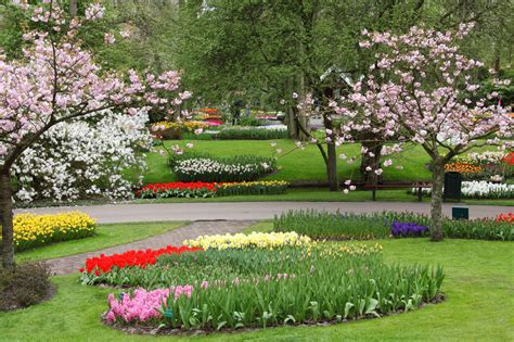 spring garden  stock photo public domain pictures