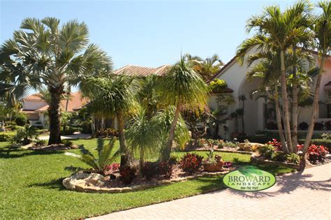palm tree backyard tropical front yard landscaping ideas with palm trees