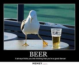 Kids Beds bird memes funny bird pictures memey com