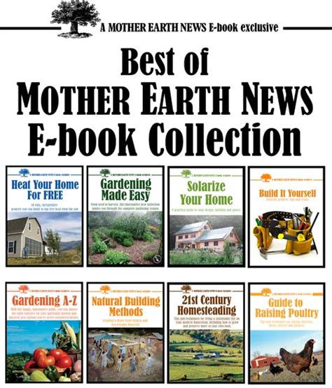 top bar beehive plans mother earth news top bar beehive plans mother earth news grit mother earth