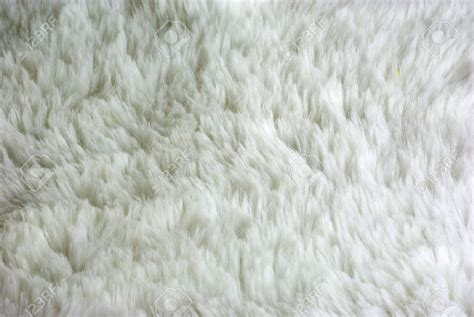 white wool rugs white wool carpet carpet ideas