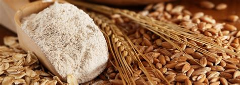 whole grains kinds tools for schools serving whole grain rich food and