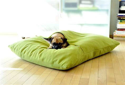 sofa kuschelig orthopedic bed zoey tails quilted orthopedic