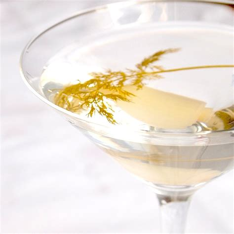 martini pickle pickle martinis and a martini lesson cookbook