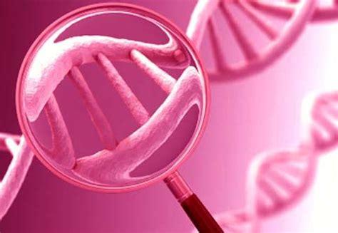 test di coppia scopri l affinit 224 dal dna nanopress donna