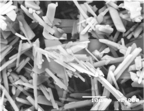 Sekrup Gypsum fig 6 sem of calcium sulfate gypsum precipitate in