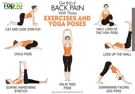 boat pose lower back pain 10 effective treatment for lower back pain relief