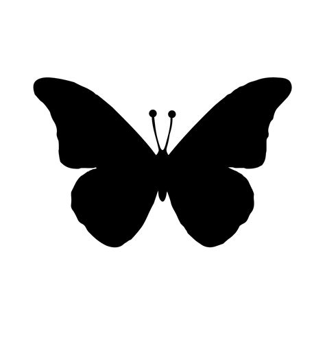 black butterfly black butterfly free stock photo public domain pictures