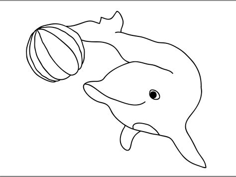 cartoon dolphin coloring page free printable dolphin coloring pages for kids animal place