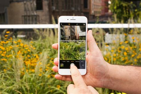 apple iphone 8 plus has the best smartphone dxomark says cnet