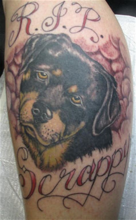 rip dog tattoos great rottweiler pictures tattooimages biz