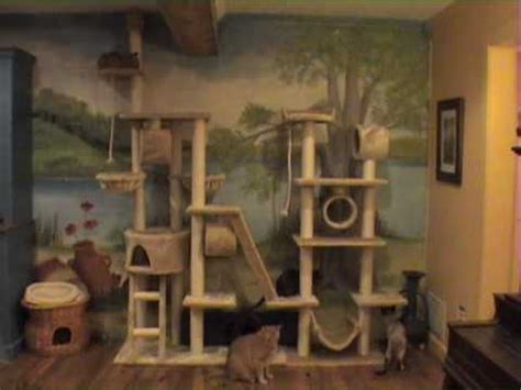 Ultimate Bed Plans Time Lapse Of Cats On Big Cat Tree Youtube