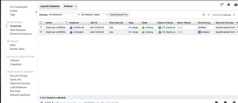 ec2 console access using squid proxy instances for web service access in