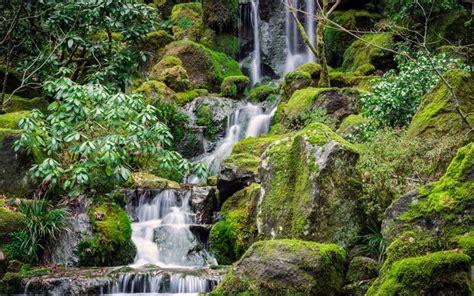 foto di giardini giapponesi scarica sfondi giardini giapponesi giapponese giardini