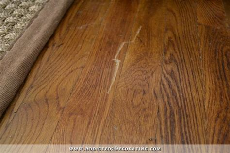 why do dogs scratch the floor scratching my hardwood floors carpet review