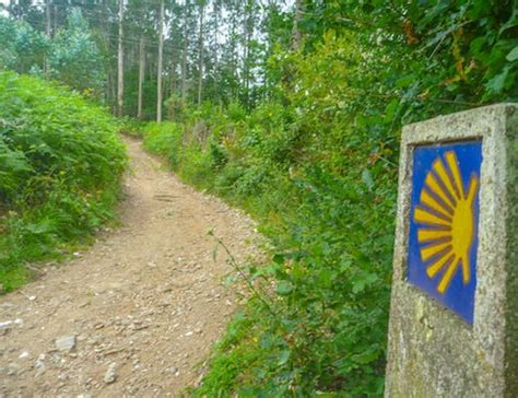 camino in inglese walking the camino way ferrol santiago 7d 6n