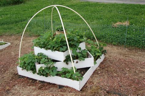 Tiered Strawberry Planter Plans by Strawberry Pyramid Opinions Help Page 2
