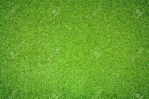 Green Grass green grass hotelroomsearch net