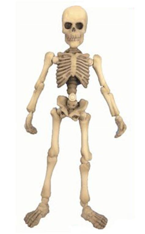 Re Ment Pose Skeleton Accessory Door Set amiami character hobby shop pose skeleton human 03