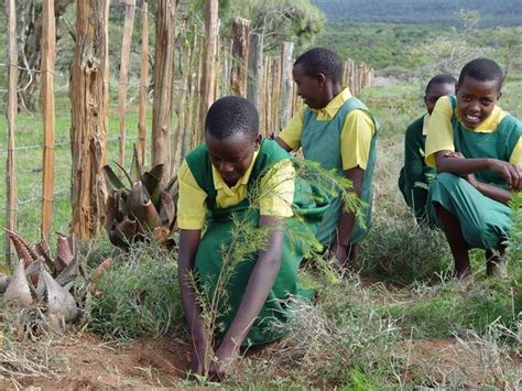 fighting architecture and design erosion earth day network plants 350 000 trees in uganda aims to