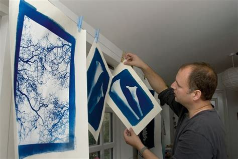 How To Make Cyanotype Paper - 25 best ideas about cyanotype process on