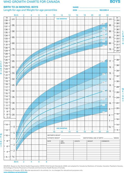 boys growth chart template   speedy template