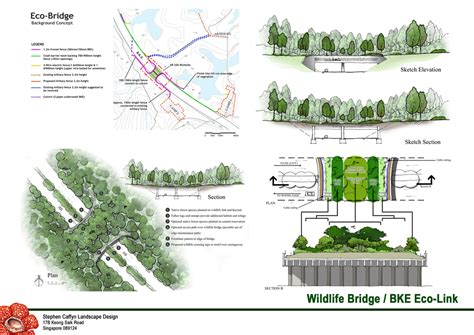 design green environment environmental design stephen caffyn landscape design