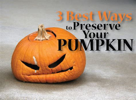 preserving pumpkins 3 best ways to preserve your pumpkins strange s florists