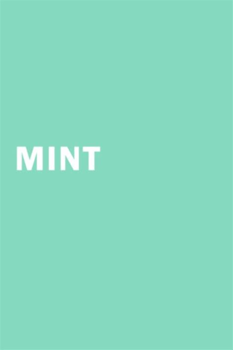 mint green color best 25 mint green ideas on mint color