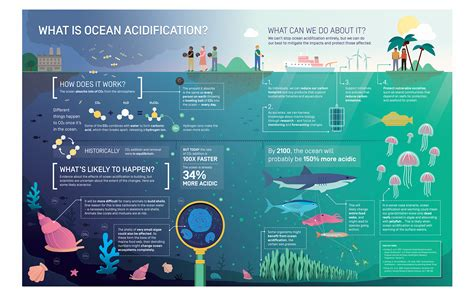 Home Design Shows Online by Infographic Ocean Acidification Science Communication
