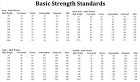 bench press standards by weight 1000 images about weightlifting standards on pinterest bench press strength and squats
