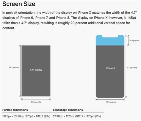 x iphone screen size quot iphone x plus quot dimensions apparently leaked by ios 12 iphone in canada