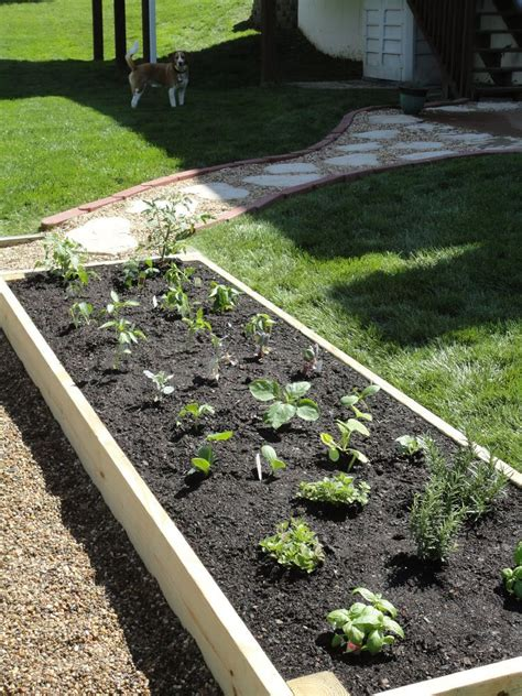 build a raised garden bed 13 easiest ways to build a raised vegetable bed in your