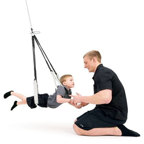 southpaw enterprises swing standard dual swing sensory integration southpaw