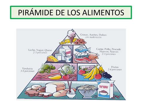 piramide de alimentos piramide alimentos los alimentos florentina cifuentes p