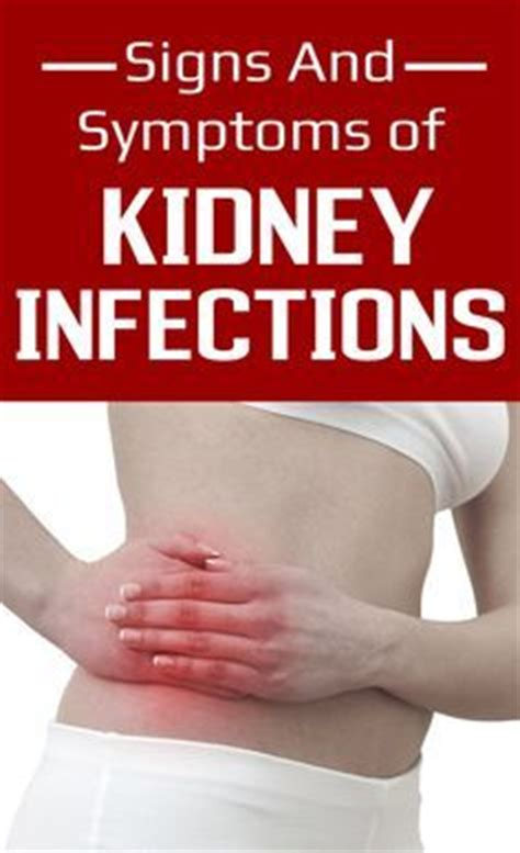 Signs That A Kidney Detox Is Working by 1000 Ideas About Kidney Infection Symptoms On
