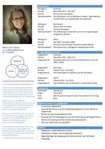 Curriculum Vitae Layout by Cv Mei 2013 Definitief