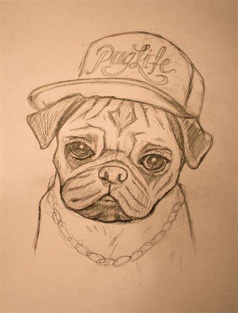 gangster pug the gangster pug the captain and the gentleman on behance
