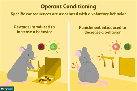 Behavior Modification Uses Learning Principles To Change S Actions Or Feelings by What Is Operant Conditioning And How Does It Work