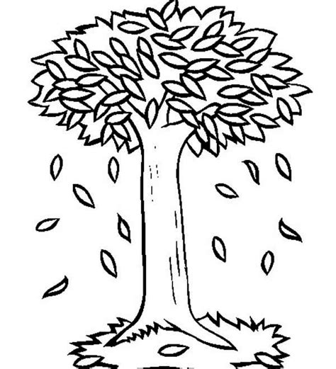 coloring pages trees and leaves coloring pages of trees with leaves coloring home