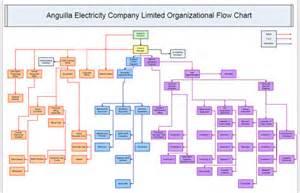 anglec organization