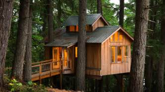 Tree Houses To Live In Living In Treehouses Of Many